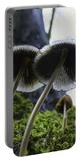 Mushrooms From Below Portable Battery Charger