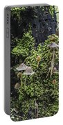 Mushroom Colony Portable Battery Charger