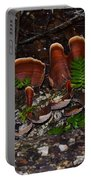 Mushrooms,log And Ferns Portable Battery Charger