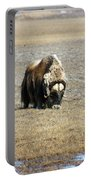 Musk Ox Grazing Portable Battery Charger