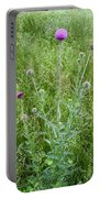 Musk Thistle In Full Glory Portable Battery Charger