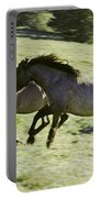 Mustang Mares Portable Battery Charger