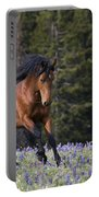 Mustang Stallion And Lupines Portable Battery Charger