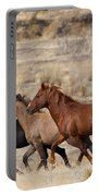 Mustang Trio Portable Battery Charger by Mike  Dawson