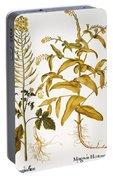 Mustard Plant, 1613 Portable Battery Charger