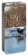 Mute Swan Chasing Canada Goose Portable Battery Charger
