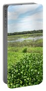 Myakka River And Marshes Portable Battery Charger