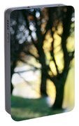 Mystic Fall Portable Battery Charger