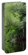 Mystical Withlacoochee River Portable Battery Charger