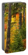 N W Autumn Portable Battery Charger