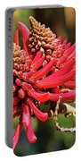 Naked Coral Tree Flower Portable Battery Charger by Mariola Bitner