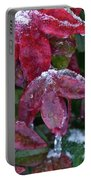 Nandina Winter Ice Portable Battery Charger