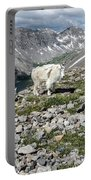 Nanny And Kid Goat #2 Portable Battery Charger