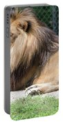 Nappin' Lion Portable Battery Charger