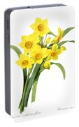 Narcissus (n. Tazetta) Portable Battery Charger