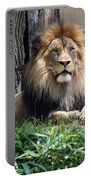 National Zoo - Luke - African Lion Portable Battery Charger