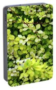 Natural Background With Small Yellow Green Leaves. Portable Battery Charger