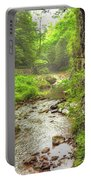 Natural Bridge Valley Portable Battery Charger
