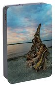 Natural Driftwood At Birch Bay State Park Portable Battery Charger