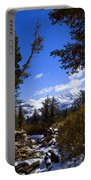 Naturally Framed Portable Battery Charger by Chris Brannen