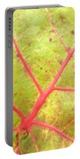 Nature Abstract Sea Grape Leaf Portable Battery Charger