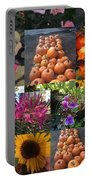 Nature Color Portable Battery Charger