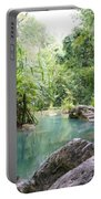 Nature Neto Portable Battery Charger