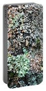 Nature Painted Tree Bark Portable Battery Charger