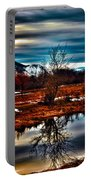 Nature Reflects Portable Battery Charger