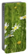 Nature Spring Scene White Wild Flowers Portable Battery Charger