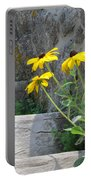 Nature Steps It Up Portable Battery Charger