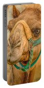 Nature Wear Camel Portable Battery Charger
