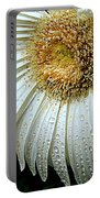 Nature When Wet Portable Battery Charger