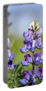 Natures Candy Portable Battery Charger