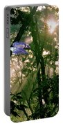 Nature's Cathedral Portable Battery Charger