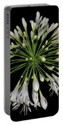 Natures Fireworks - Lily Of The Nile 005 Portable Battery Charger