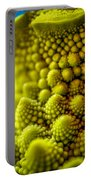 Nature's Fractals Portable Battery Charger