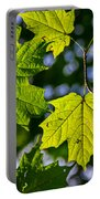 Natures Going Green Design Portable Battery Charger