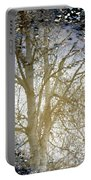 Natures Looking Glass 4 Portable Battery Charger