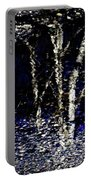 Natures Looking Glass 5 Portable Battery Charger