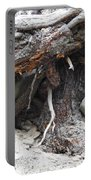 Nature's Roots Portable Battery Charger