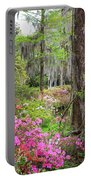 Natures Scenery  Portable Battery Charger