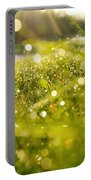 Nature's Sparkles Portable Battery Charger
