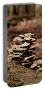 Nature's Stack Portable Battery Charger