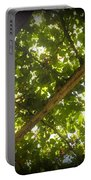 Nature's Upward View Portable Battery Charger