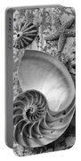 Nautilus Shell With Starfish Portable Battery Charger