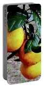Naval Oranges On The Tree Portable Battery Charger