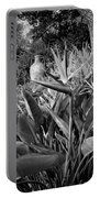 Nepenthe Bird Of Paradise B And W Portable Battery Charger
