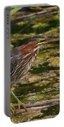 Nervous Green Heron Portable Battery Charger