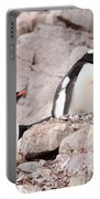 Nesting Gentoo Penguins Portable Battery Charger